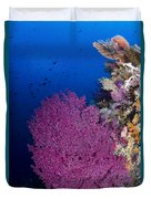 Purple Sea Fan In Raja Ampat, Indonesia Duvet Cover
