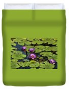 Purple Water Lilies - Nymphaea Capensis  Duvet Cover