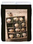 Quail Eggs In Box Duvet Cover