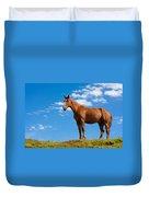 Quarter Horse Duvet Cover