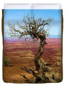 Rainbow Canyon Duvet Cover