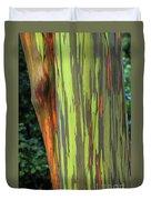 Rainbow Gum Tree Hawaii Duvet Cover