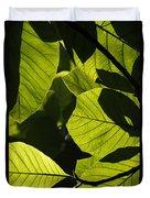 Rainforest Leaves Showing Sunlight Duvet Cover