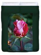 Raspberry Swirl Rose Duvet Cover