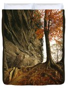 Raven Rock And Autumn Colored Beech Duvet Cover