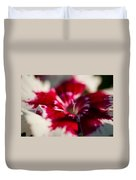 Red And White Dianthus Duvet Cover