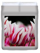 Red And White Tulips In Holland Duvet Cover
