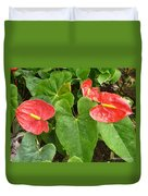 Red Anthurium Duvet Cover