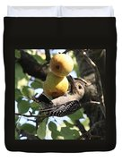 Red-bellied Woodpecker - Yummy Pears Duvet Cover