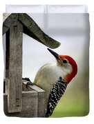 Red Bellied Woodpecker Duvet Cover by L Granville Laird