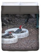 Red Bellied Woodpeckers Male And Female Duvet Cover