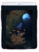 Red Bigeye Fish And Sea Fan In An Duvet Cover by Mathieu Meur