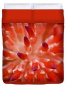 Red Bromeliad Duvet Cover by Rich Franco