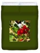 Red Bunch Duvet Cover by LeeAnn McLaneGoetz McLaneGoetzStudioLLCcom