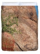 Red Cactus Rock Duvet Cover