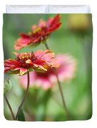 Red Daisies  Duvet Cover