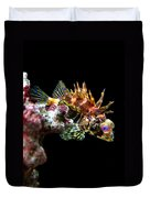 Red Eyed Scorpion Fish Duvet Cover