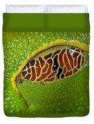 Red Eyed Tree Frog Eyelid Costa Rica Duvet Cover