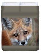 Red Fox 352 Duvet Cover