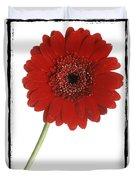 Red Gerber Daisy Duvet Cover