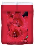 Red Gladiolus Duvet Cover by Susan Herber