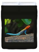 Red-headed Agama Duvet Cover