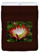 Red King Protea Duvet Cover