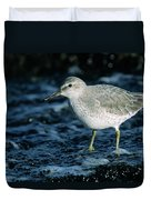 Red Knot Calidris Canutus In Winter Duvet Cover