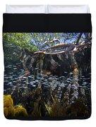 Red Mangrove Rhizophora Mangle Aerial Duvet Cover