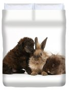Red Merle Toy Poodle Pup, Guinea Pig Duvet Cover