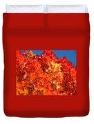 Red Orange Yellow Autumn Leaves Art Prints Vivid Bright Duvet Cover