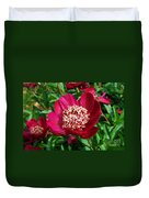Red Peony Flowers Series 2 Duvet Cover