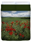 Red Poppies Edge A Field Near Moscow Duvet Cover