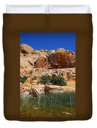 Red Rock Canyon The Tank Duvet Cover
