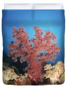 Red Soft Coral,  Australia Duvet Cover