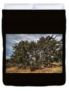 Red Spruce On Whitetop Mountain Duvet Cover