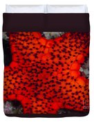 Red Starfish In Raja Ampat, Indonesia Duvet Cover