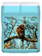 Red Tail Hawk Visitor Duvet Cover