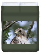 Red-tailed Hawk Has Superior Vision Duvet Cover