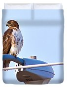 Red-tailed Hawk Perched Duvet Cover