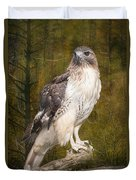 Red Tailed Hawk Perched On A Branch In The Woodlands Duvet Cover