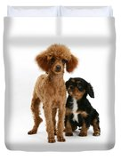 Red Toy Poodle And Cavalier King Duvet Cover