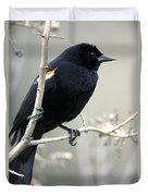 Red-winged Blackbird Agelaius Duvet Cover