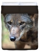 Red Wolf Closeup Duvet Cover