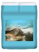 Redlip Parrotfish Duvet Cover