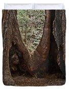 Redwood Feet Duvet Cover