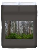Redwoods In Breaking Mists Duvet Cover