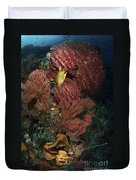 Reef Sponge Coral And Yellow Fish Duvet Cover