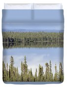 Reflection In Willow Lake Near Copper Duvet Cover