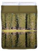 Reflections Along Summit Lake Duvet Cover